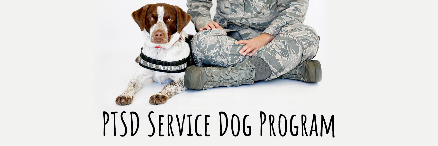 PTSD Service Dog Program