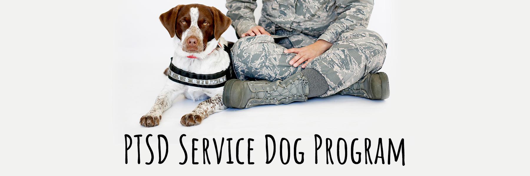 PTSD Service Dog Program