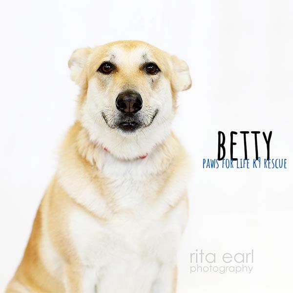 Adopt Betty!