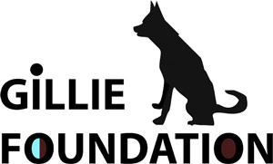 The Gillie Foundation