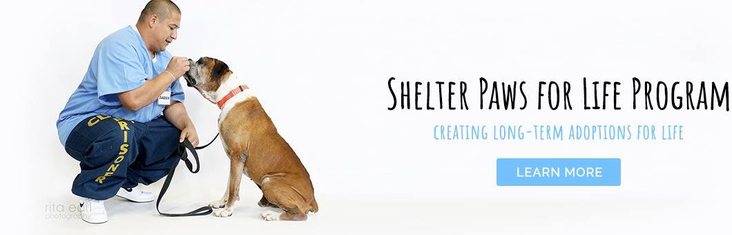 Shelter Paws for Life program