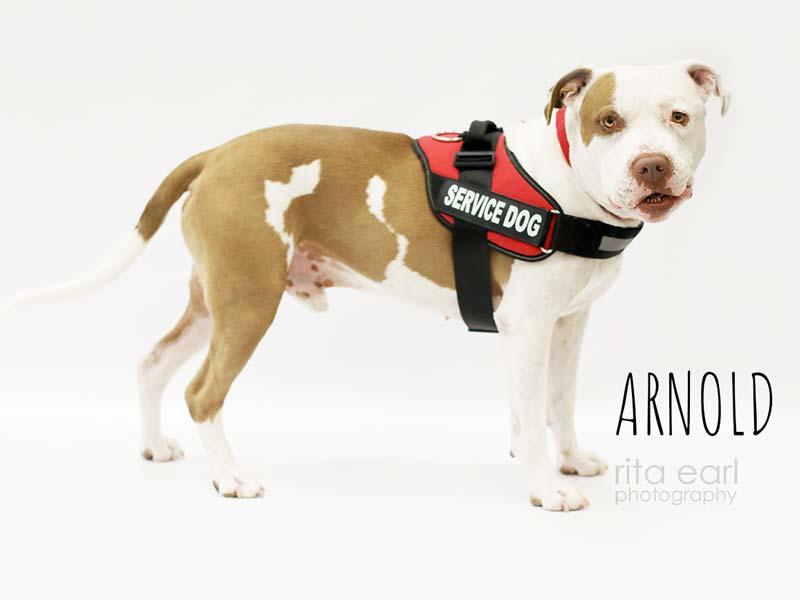 Arnold, a PTSD 12-month program trainee.