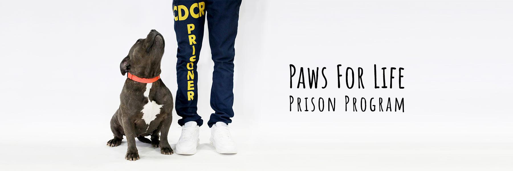 Paws For Life K9 Prison Program
