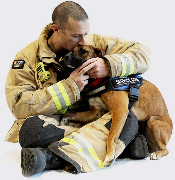 Therapy dog with fireman